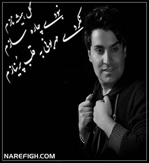 آهنگ گل همیشه نازم از محمد امین غلامیاری