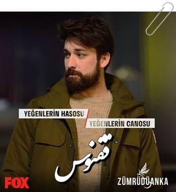 دانلود سریال ترکی ققنوس Zumruduanka با زیرنویس فارسی